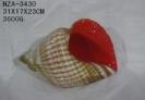 b_133_100_16777215_00_images_tovar_00356368.jpg